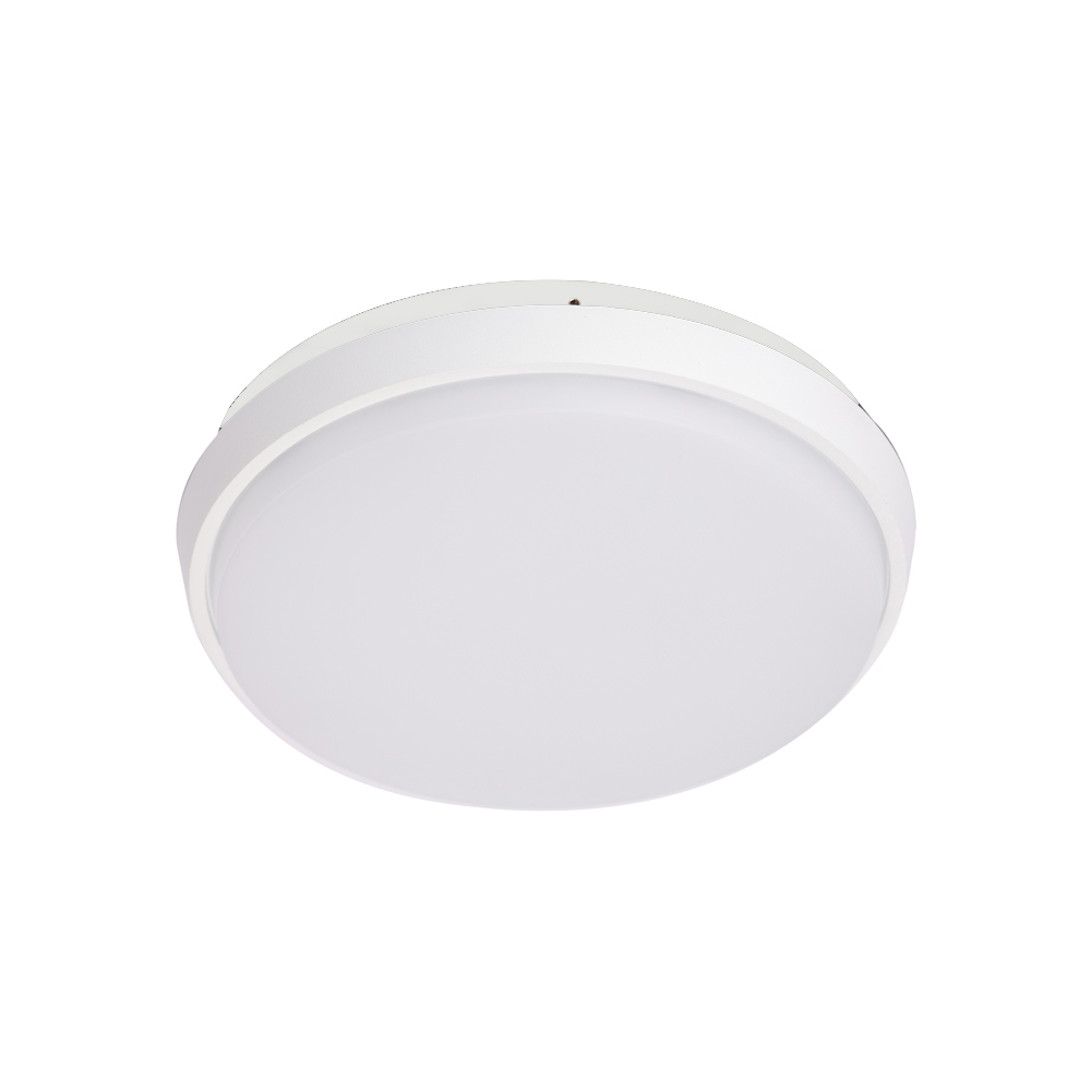 25W LED Ceiling Bulkhead