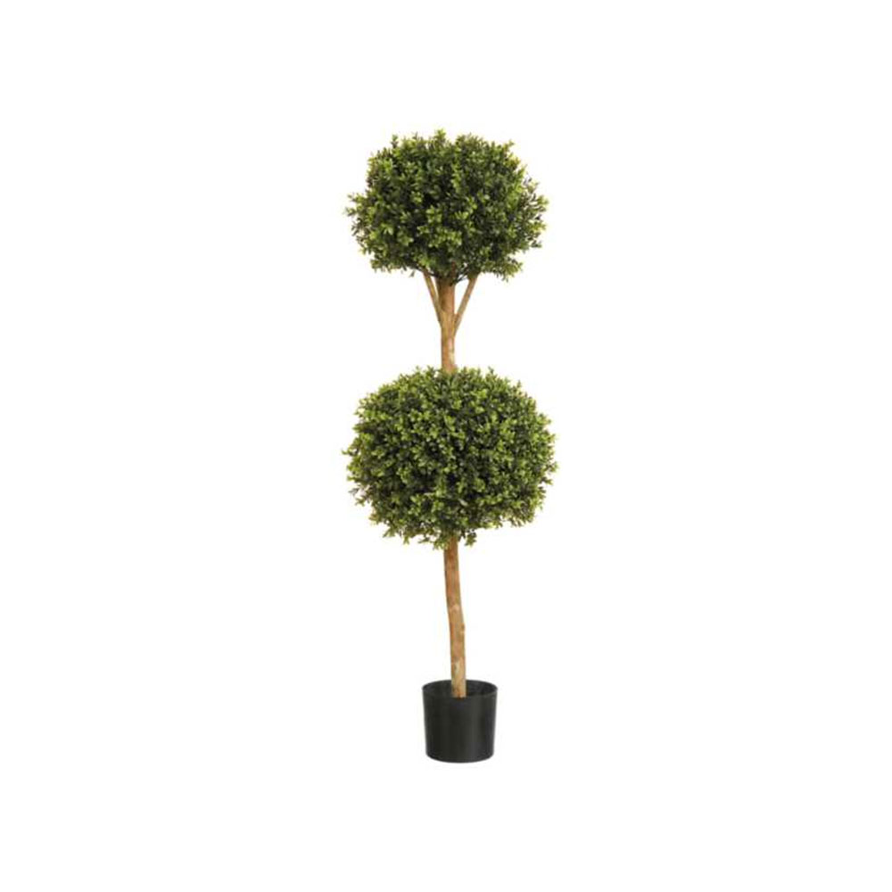 Boxwood Double Ball Tree