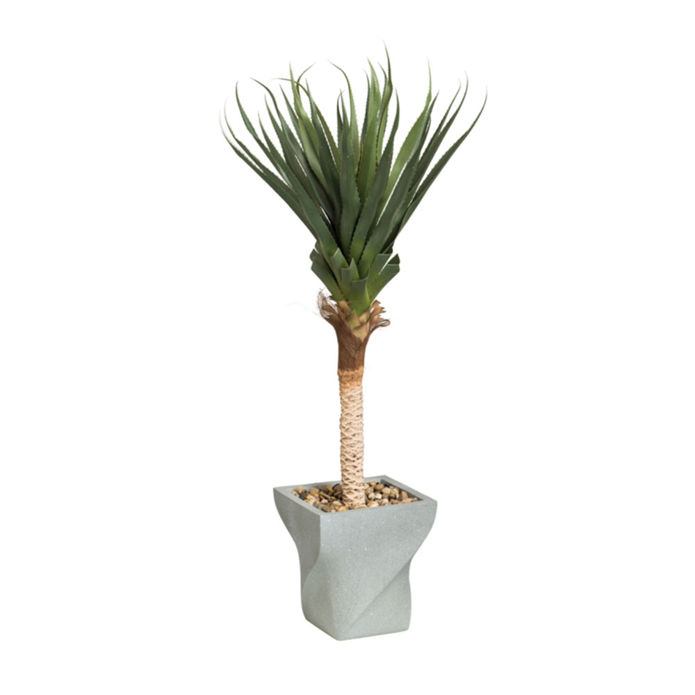 Spiked Agave Tree with Planter
