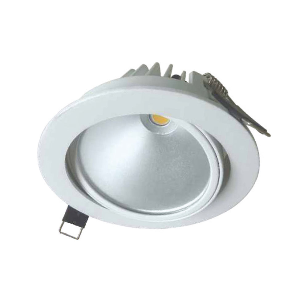 PRO700 7W Directional D-Lux LED IP65 Downlight