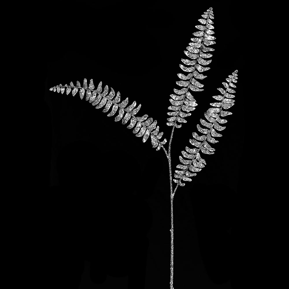 Silver Boston Fern Spray