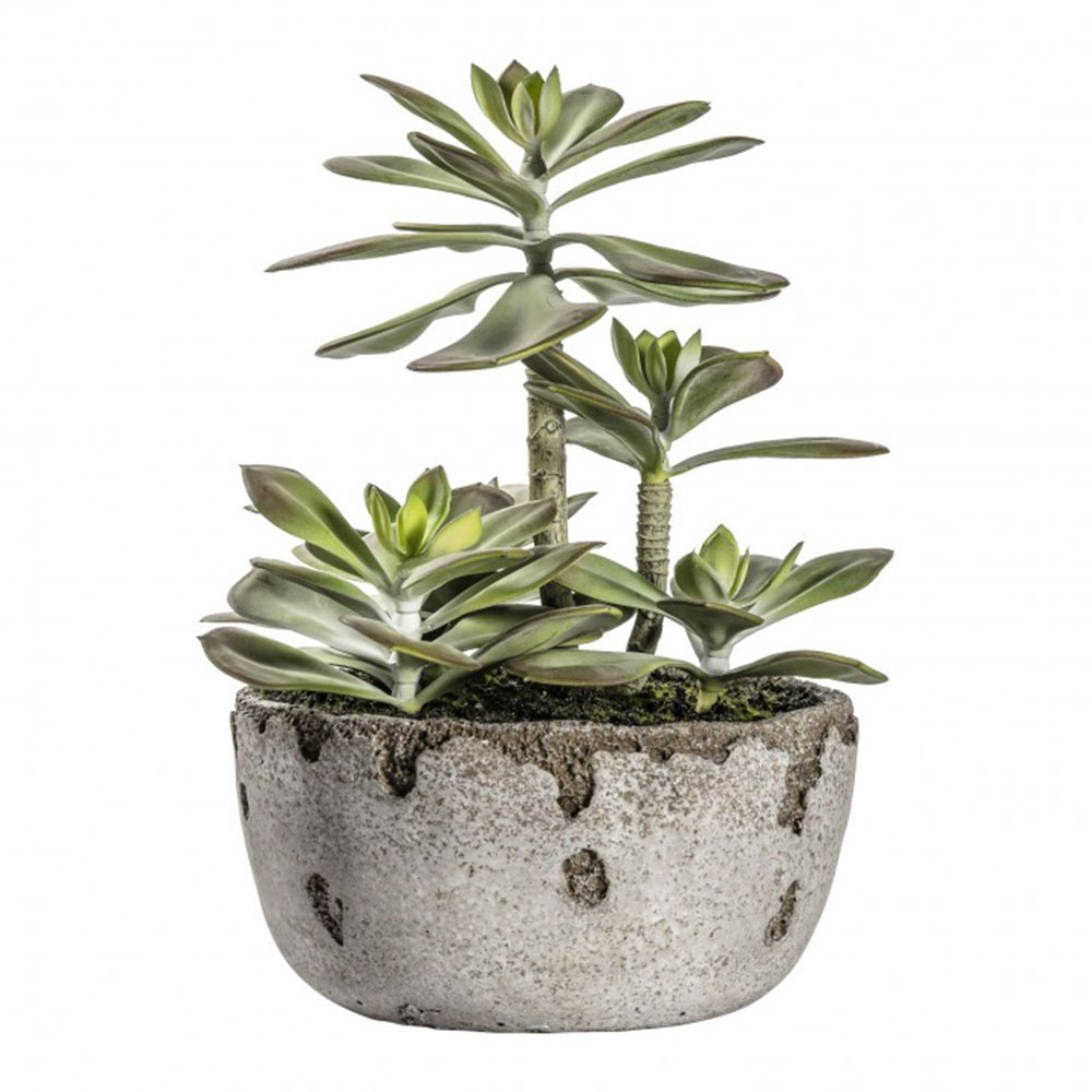 Faux Kalanchoe Pale Green with Rustic Pot