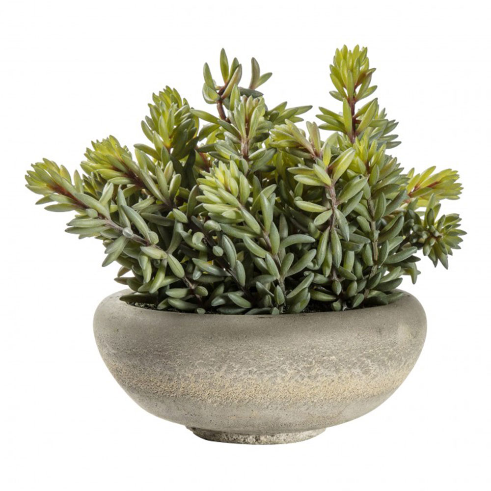 Large Faux Sedum Green with Cement Bowl